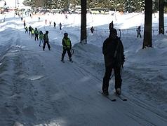 Trasa narciarska w Zakopanem