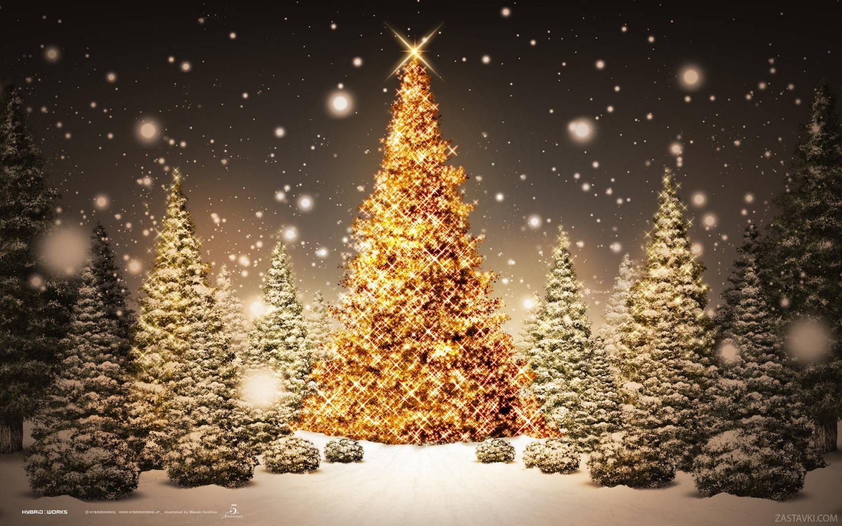 Boże Narodzenie wolne pokoje zakopane