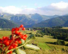 Czerwiec w Tatrach-  Weekend Czerwcowy Zakopane