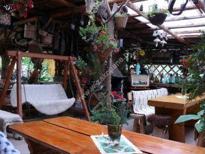 Wynajem pokoi  i domków Krystyna Mróz, zdjęcie nr. 1166