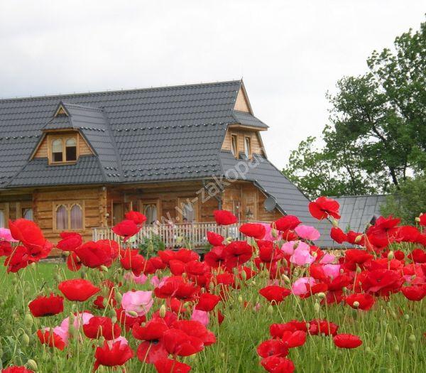 Dom drewniany z widokiem na Tatry-1708