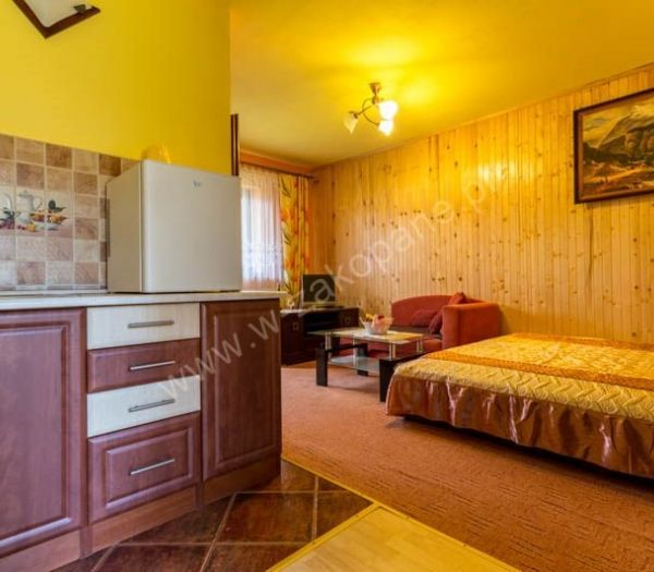 Willa Dziubek 2 - Apartamenty-4145